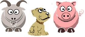 dog,pig,goat